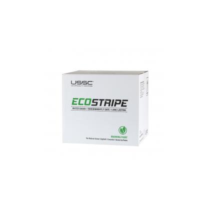 Image of a boxed case of EcoStripe Aerosol Paint